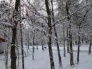Téli táj_13