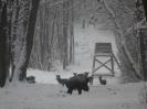 Téli táj_9